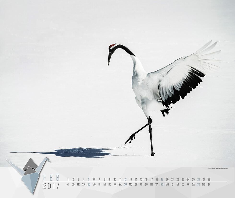Februar 2017 | Colorami Gewinnspiel | Staudigl-Druck