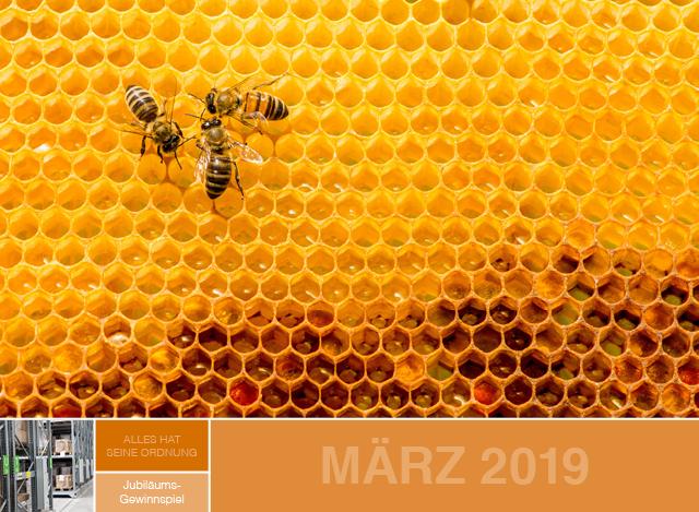 März 2019 | Staudigl-Druck Gewinnspiel