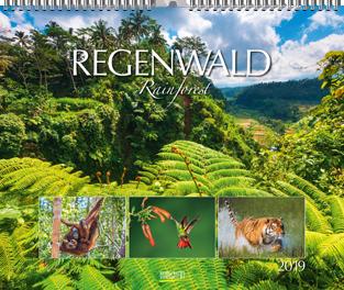 Regenwald | Gregor Calendar Award 2019 – Bronze
